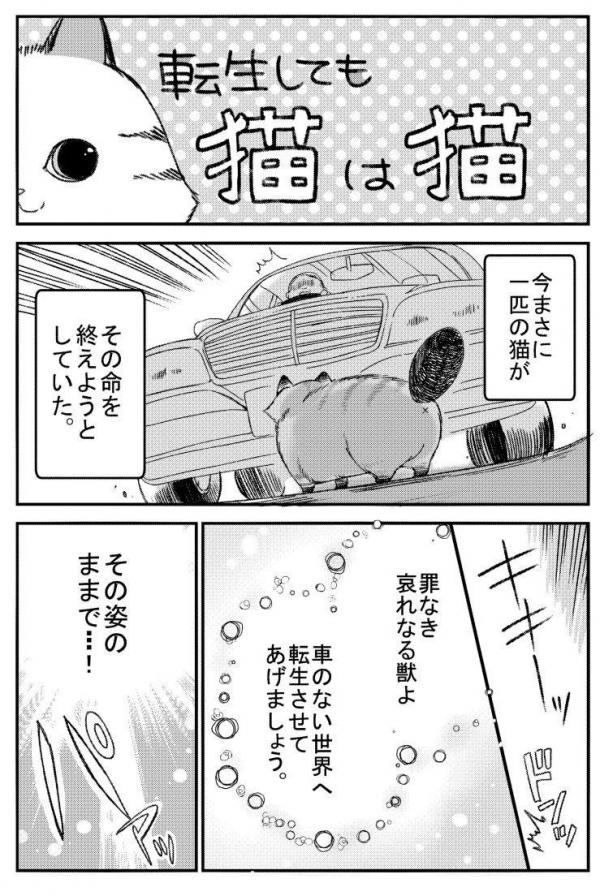 A story about a cat reincarnated in a different world where there are no cats. Manga